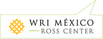 Ross Center Mexico
